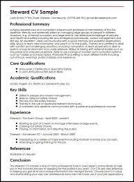 Job Skills For Cv Steward Cv Sample Myperfectcv