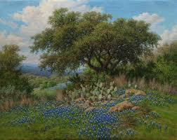 bluebonnet oil painting by william hagerman copyright 2016