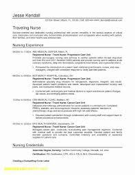 18 How To Write A Professional Resume Brucerea Com