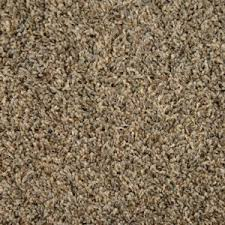 home decorators collection carpet sample captivating color