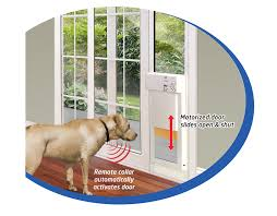 pictures of large dog doors for sliding glass doors