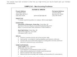 Objectives For Resumes Inspiration Sample Career Objective For Bank Jobs Freshers Attractive Resume