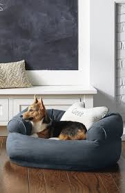 best sofa for dogs. Comfy Couch Pet Bed Best Sofa For Dogs