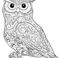 Printable Owl Coloring Pages For Adults Coloring Page 2018