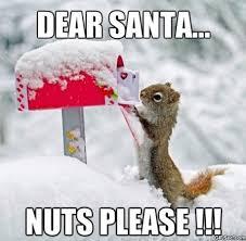 -Dear-Santa-MEME.jpg via Relatably.com