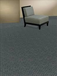dolphin carpet