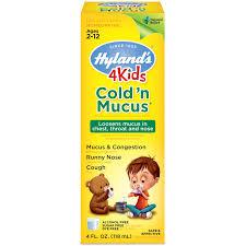 Hylands 4 Kids Cold N Mucus Ages 2 12 4 Fl Oz 118 Ml