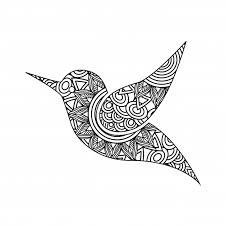 Tekening Zentangle Voor Vogel Volwassen Kleurplaat Vector