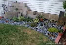 My Succulent Zen Garden Part 23
