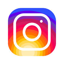 Výsledek obrázku pro ikonka instagram
