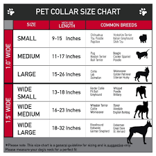 Small Dog Collar Size Chart Grateful Dead Dancing Bears Dog Collar
