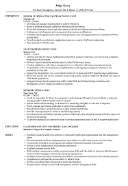 Systems Consultant Sample Resume System Consultant Resume Samples Velvet Jobs 1