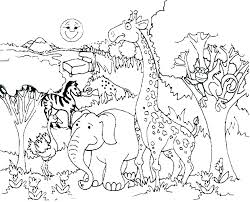 Coloring Pages Forest Animals Forest Animal Coloring Pages Pages Animals Deciduous With Forest