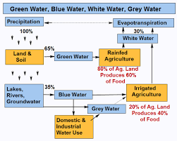 Flow Chart On Water Cycle 10 Abiding Water Cycle Flow Map