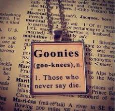 Image result for goonies wishing well