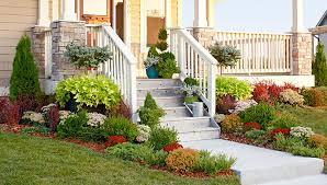 Small Picture Landscaping Ideas Evergreen Garden Bed