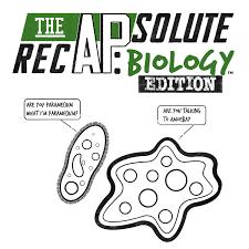 The APsolute RecAP: Biology Edition