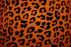 Leopard Print Wallpaper For Bedroom Cheetah Print Desktop Wallpaper