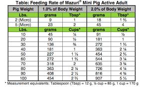 Potbellied Pig Diet Hog Haven Farm
