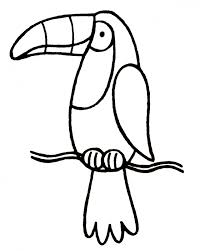 Small Picture Cartoon Toucan Pictures Clip Art Library