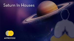 Arjun Kapoor Birth Chart How Saturn Affects The Different Houses In Your Birth Chart