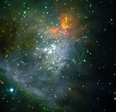 Ntt Observations Indicate That Brown Dwarfs Form Like Stars