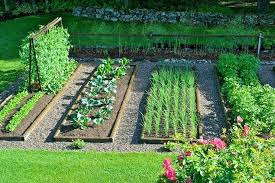 garden catalogs by mail best gardening catalogs large size of organic plant mail order catalogs best garden catalogs