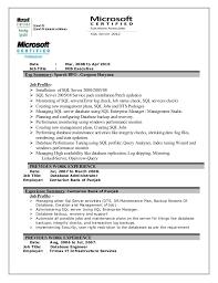 sample mis executive resume