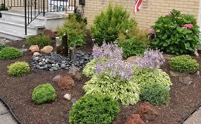 slow growing shrubs create low