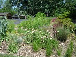 design a garden. Garden Design. Will You Do It Yourself Or Need Professional Help Design A
