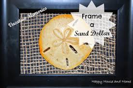framed sand dollar diy wall art