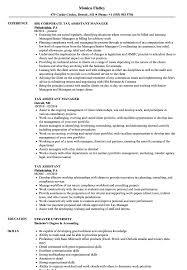 Tax Assistant Sample Resume Tax Assistant Resume Samples Velvet Jobs 1