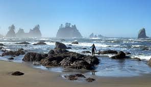 Tide Chart Long Beach Wa Hike Shi Shi Beach To Point Of Arches On Olympic Coast My