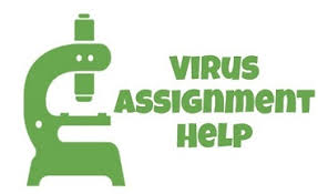 virus assignment help brief note about virus biology assignment help virus assignment help