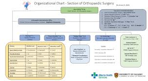 Alberta Health Services Organizational Chart 2017 Section Of Orthopaedic Surgery Orthopaedic Surgery