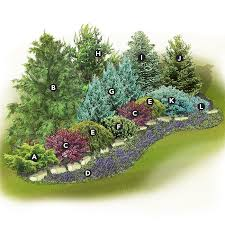Small Picture Landscaping with Evergreens
