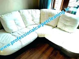 leather chair cleaner products couch cleaning products suede h cleaner leather sofa cleaning products baseboard chair