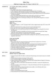 Html Resume Samples Html Developer Resume Samples Velvet Jobs 5