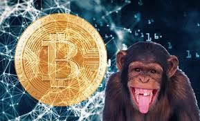 Two other people get singled out in thomas' story of woe, but it's a surprisingly common tale. A Story About Bitcoin And Monkeys Chatfield