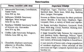 short essay on sanctuaries in