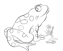 frog pictures to print. Fine Frog Frog Pictures To Print G