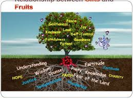 the fruit folds which is the wisdom