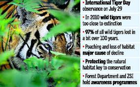 contests to highlight tiger conservation the hindu
