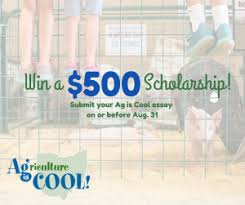 ag is cool essays due aug ohio state fair submit your essay for your chance at a 500 scholarship by aug 31 2017