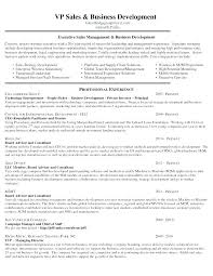 Business Development Objective Statement Operations Analyst Resume Sample It Business Example Objective