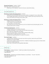 Resume With Volunteer Experience Template Resume Volunteer Experience Sample Beautiful Resume Volunteer 49