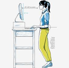 ideal position at your sit stand desk