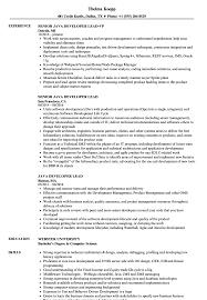Sample Java Resume Java Developer Lead Resume Samples Velvet Jobs 13