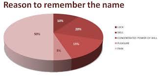Fort Minor Remember The Name Pie Chart Graph Dan Spira