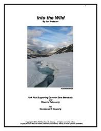 into thin air nonfiction test and essay questions entire book literature into the wild unit plan